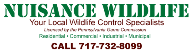 Nuisance Wildlife Logo